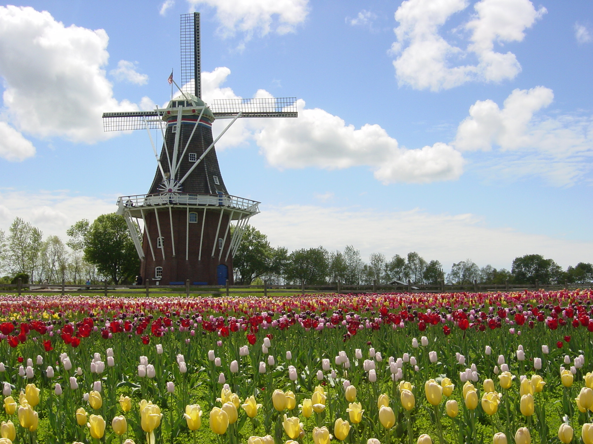 Visit Holland, Michigan in the Spring