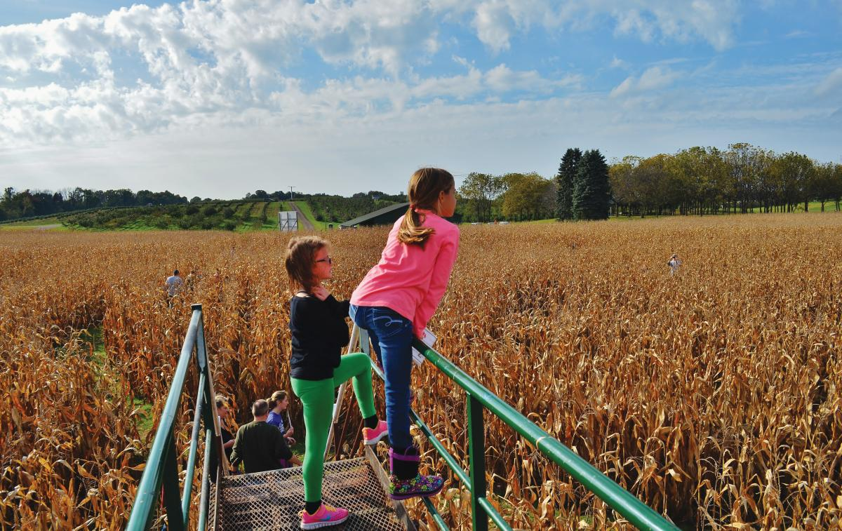 U-Picks, Corn Mazes, and Hayrides –  Fall in Holland, Michigan