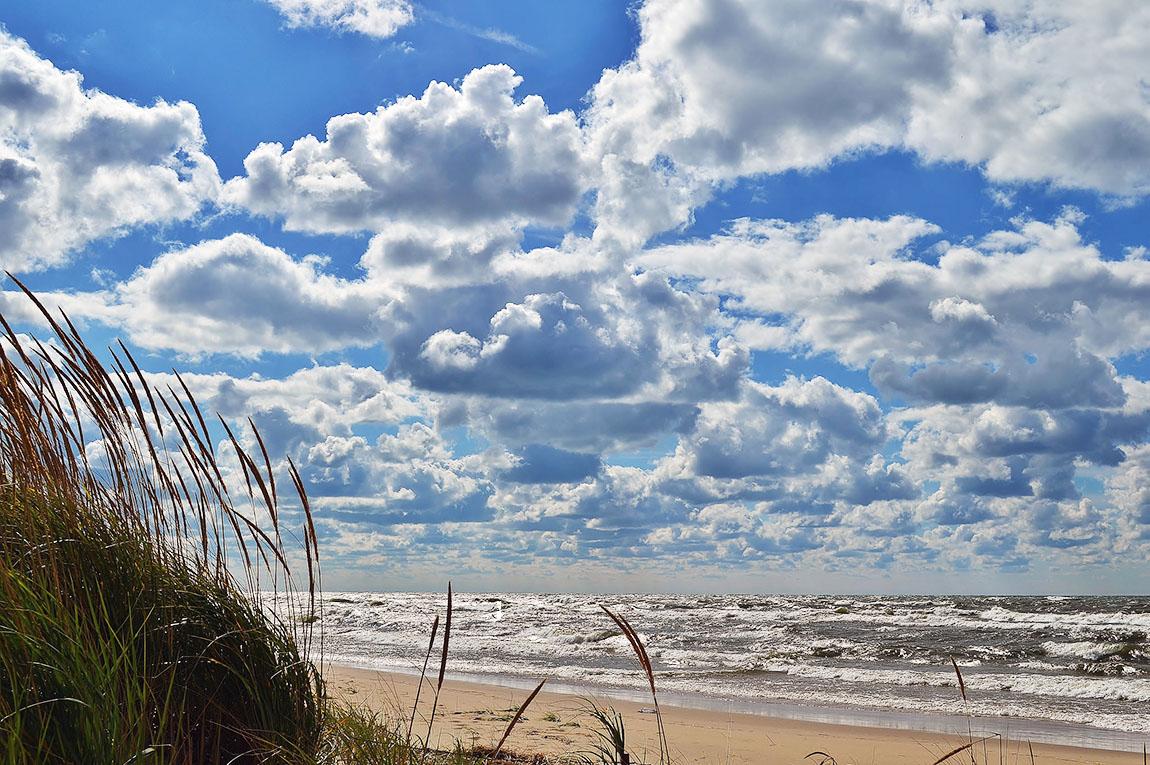 Windmill Island in Holland, MI | © C Amalia/Flickr