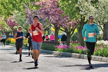 Tulip Time Run