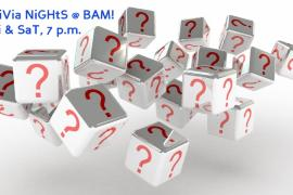 Trivia Saturdays at BAM!