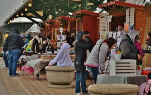 Winter market | Holiday shopping | Downtown Holland, MI