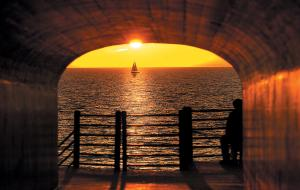 Holland, Tunnel Park, Summer, Beach, Park
